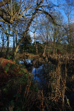 Hinchingbrooke Country Park 4