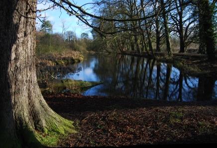 Hinchingbrooke Country Park 1