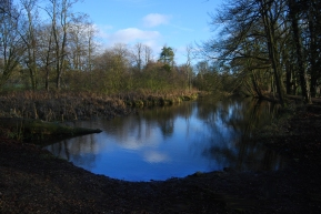 Hinchingbrooke Country Park 7